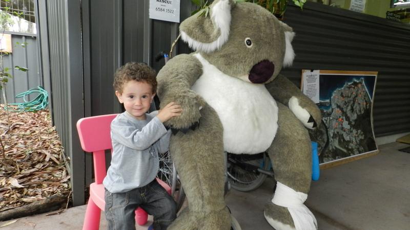 ניו זילנד Update: פורט מקוורי Port Macquarie